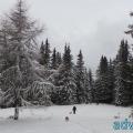 040-adventureV Berg-Silvester 2014