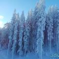 055-adventureV Berg-Silvester 2014