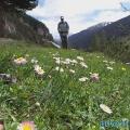 025-Frühjahrs-Wanderwoche in den Tiroler Bergen 2013