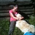 023-Veggie DogDays Obernberg 2014