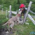 045-Veggie DogDays Obernberg 2014