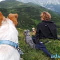 057-Veggie DogDays Obernberg 2014